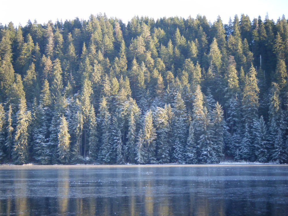 Auke Lake (1/6)
