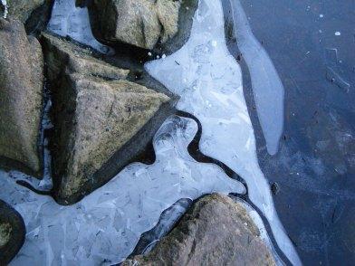 Frozen lake's edge