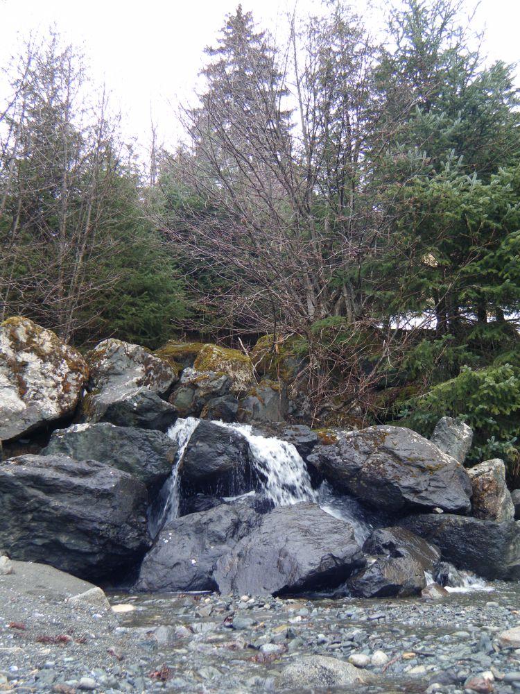 Exploring Juneau (1/6)